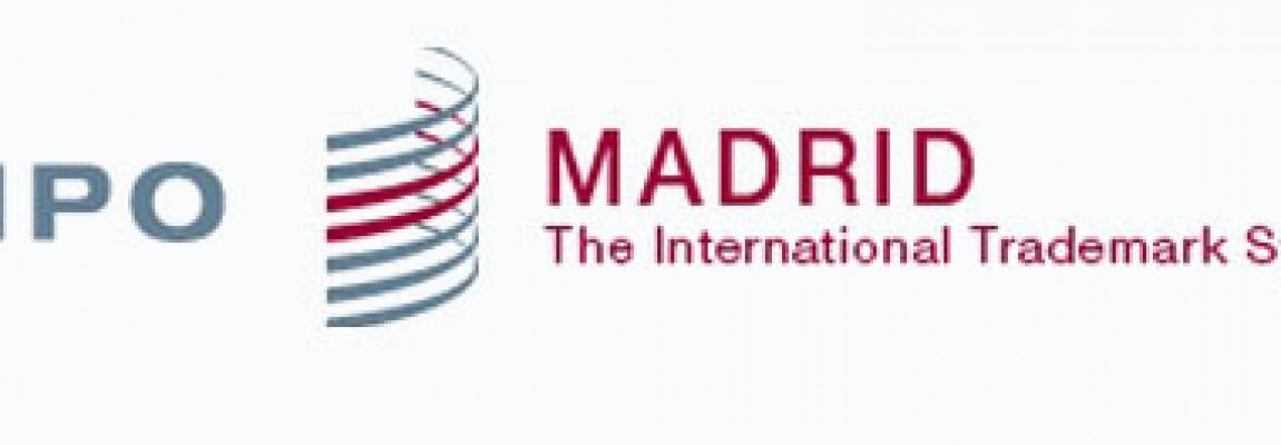 Uluslararası Marka Başvurusu